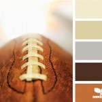 weekend colour inspiration – leather tones colour scheme