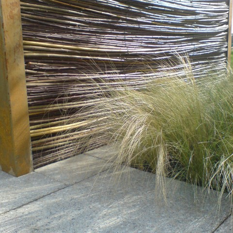 screen and grasses